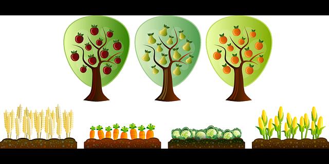 pěstování ovoce a zeleniny