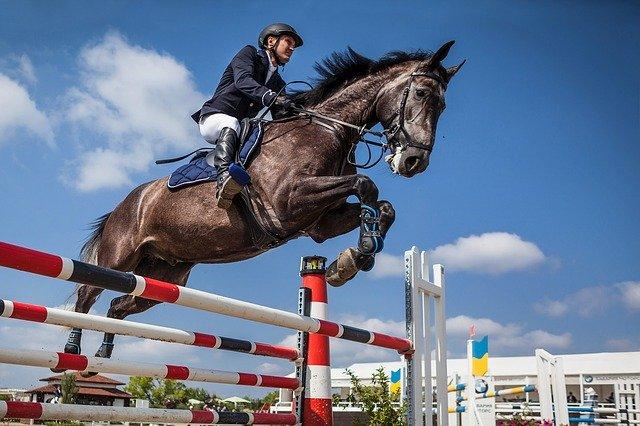 jezdec na koni ve skoku